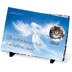 Plaque Funéraire animal ardoise ange nuages
