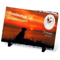 Plaque Funéraire chien et coucher de soleil ardoise chien et femme