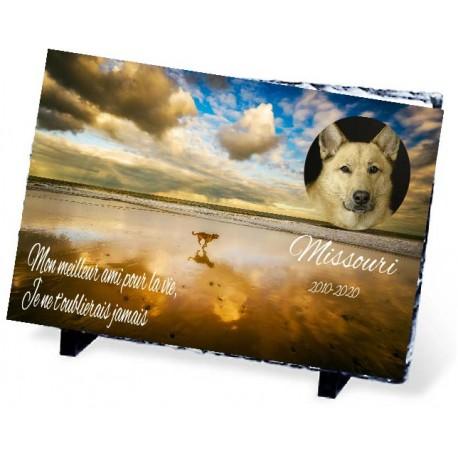 Plaque Funéraire pour chien de la plage