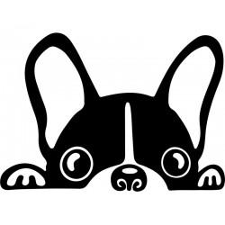 Sticker chien mignon