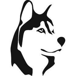 Sticker Husky