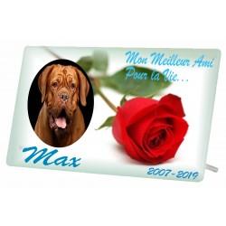 Plaque Funéraire Chien Rose 2