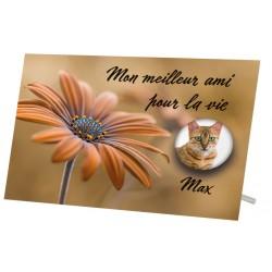 Plaque Funéraire Chat Fleur Marron