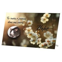 Plaque Funéraire Rat Fleur Blanche