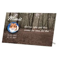 Plaque Funéraire Hamster Bois Gris