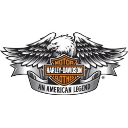 Sticker couleur Harley 3